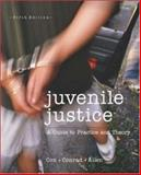 Juvenile Justice : A Guide to Practice and Theory, Cox, Steven M. and Conrad, John J., 0697356175