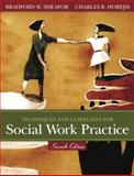Techniques and Guidelines for Social Work Practice, Sheafor, Bradford W. and Horejsi, Charles, 0205446175