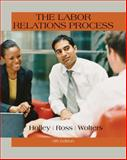 The Labor Relations Process 11th Edition