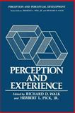 Perception and Experience, , 1468426214