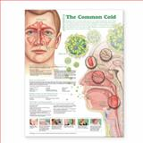 Understanding the Common Cold, Anatomical Chart Company, 0781786304