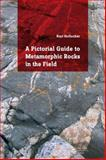 Metamorphic Rocks in the Field, Kurt Hollocher, 1138026301