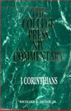 NIV Commentary : I Corinthians, Oster, Richard E., Jr., 0899006337