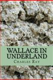 Wallace in Underland, Charles Ray, 1466206373