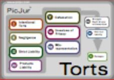PicJur Torts Deck, PicJur, 098269637X