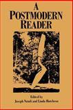 A Postmodern Reader 9780791416389