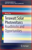 Terawatt Solar Photovoltaics : Roadblocks and Opportunities, Tao, Meng, 1447156420