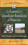 The Economics of Groundwater Remediation and Protection 9781566706438