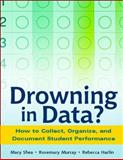 Drowning in Data? 9780325006505