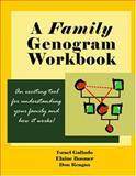A Family Genogram Workbook, Israel Galindo and Elaine Boomer, 097157653X