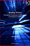 Healing Waters : Therapeutic Landscapes in Historic and Contemporary Ireland, Foley, Ronan, 0754676536