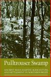 Pulltrouser Swamp : Ancient Maya Habitat, Agruculture and Settlement in Northern Belize, Turner, B. L., 0874806542