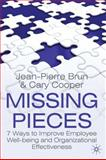 Missing Pieces : 7 Ways to Improve Employee Well-Being and Organizational Effectiveness, Brun, Jean-Pierre and Cooper, Cary, 0230576583