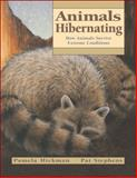 Animals Hibernating, Pamela Hickman, 1553376625