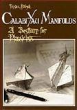 Calabi-Yau Manifolds : A Bestiary for Physicists, Hubsch, T., 9810206623