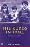 The Kurds in Iraq : The Past, Present and Future, Yildiz, Kerim, 0745326633
