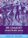 The Community Mental Health System : A Navigational Guide for Providers, Scileppi, John A. and Teed, Elizabeth Lee, 0205486657