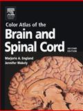 Color Atlas of the Brain and Spinal Cord : An Introduction to Normal Neuroanatomy, England, Marjorie A. and Wakeley, Jennifer, 0323036678