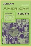 Asian American Youth, , 0415946697