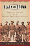 Black and Brown : African Americans and the Mexican Revolution, 1910-1920, Horne, Gerald, 0814736734