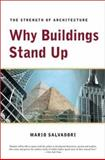 Why Buildings Stand Up 9780393306767
