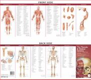 The Muscular and Skeletal Systems, Anatomical Chart Company, 0781776783