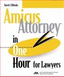 Amicus Attorney in One Hour for Lawyers Version IV, Bilinsky, David J., 1570736812
