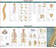 The Vertebral Column and Spine Disorders, Anatomical Chart Company, 0781776821