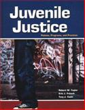 Juvenile Justice with Student Tutorial, Taylor, Robert W. and Fritsch, Eric J., 0078276837