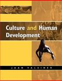 Culture and Human Development 9780761956846