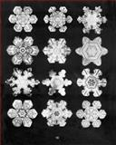 Bentley's Snowflakes, W. A. Bentley, 0486996883