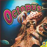 Octopuses, Judy Wearing, 1616906898