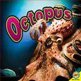 Octopuses, Judy Wearing, 1616906936