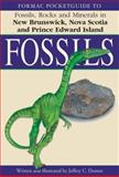Formac Pocketguide to Fossils, , 0887806961