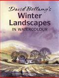 David Bellamy's Winter Landscapes, David Bellamy, 1844487032