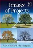 Projects Programmes and Portfolios : Working with Multiple Perspectives, Winter, Mark and Szczepanek, Tony, 0566087162