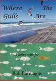 Where the Gulls Are, Bob Burroughs, 1463417195