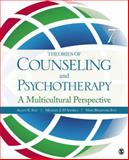 Theories of Counseling and Psychotherapy : A Multicultural Perspective, Ivey, Mary and D'Andrea, Michael J., 1412987237