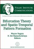 Bifurcation Theory and Spatio-Temporal Pattern Formation, Wayne Nagata and N. Sri Namachchivaya, 0821837257