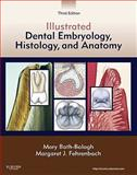 Illustrated Dental Embryology, Histology, and Anatomy, Bath-Balogh, Mary and Fehrenbach, Margaret J., 1437717306