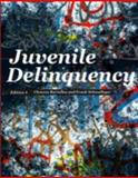Juvenile Delinquency, Bartollas, Clemens and Schmalleger, Frank J., 0132987317