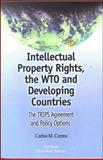 Intellectual Property Rights, the WTO and Developing Countries : The TRIPS Agreement and Policy Options, Correa, Carlos M., 1856497364