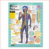 Blueprint for Health Your Brain and Nerves Chart, Anatomical Chart Company Staff, 1587797437