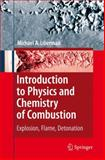 Introduction to Physics and Chemistry of Combustion 9783642097553