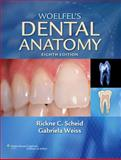 Scheid:Woelfel's Dental Anatomy and Stedmans:Stedman's Medical Dictionary for the Dental Professions Package, Lippincott  Williams & Wilkins, 1451127561