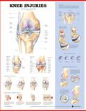 Knee Injuries, Anatomical Chart Company Staff, 1587797569