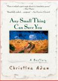 Any Small Thing Can Save You, Christina Adam, 0425187624