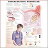 Understanding Menopause Anatomical Chart, Anatomical Chart Company Staff, 1587797631
