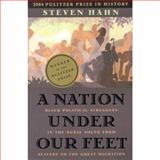 A Nation under Our Feet