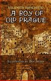 A Boy of Old Prague, Sulamith Ish-Kishor, 048646766X